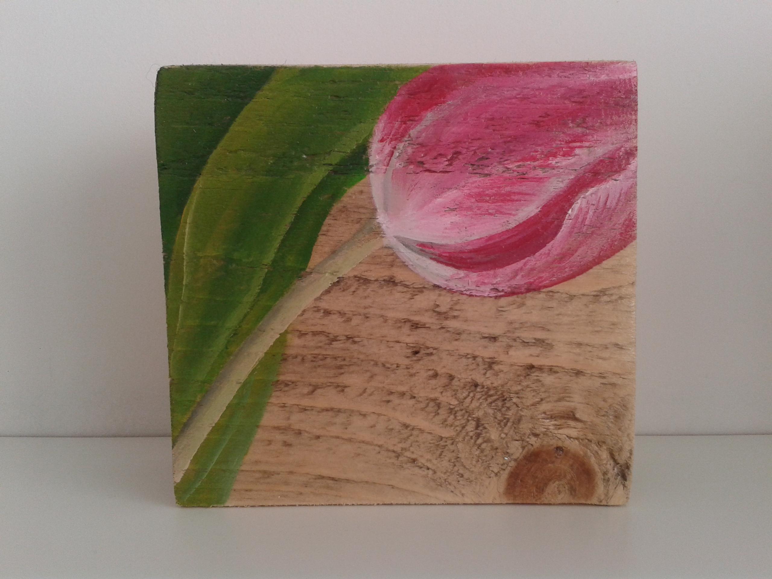 Roze tulpje